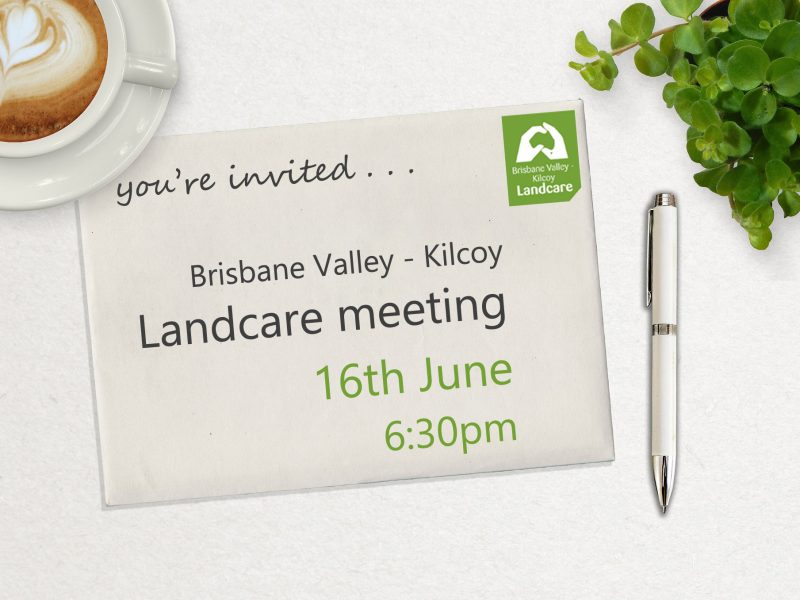 BVKLC June 2021 meeting